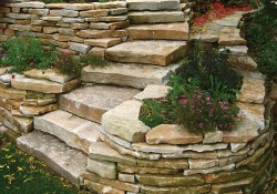 WE steps and rand wstone website